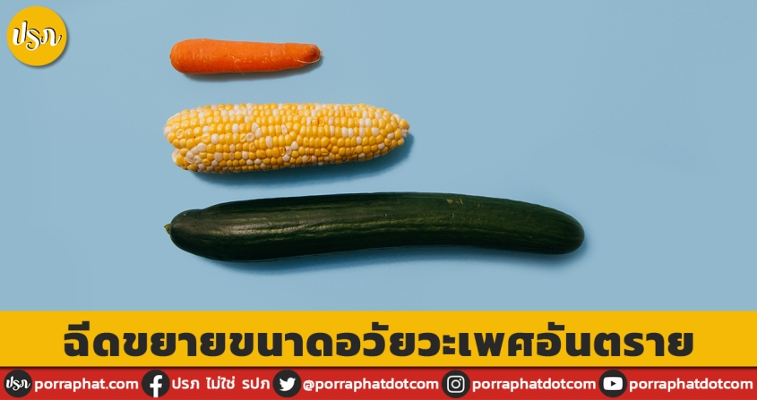 carrot corn cucumber